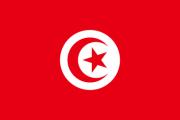 Elections de Tunisie octobre 2014